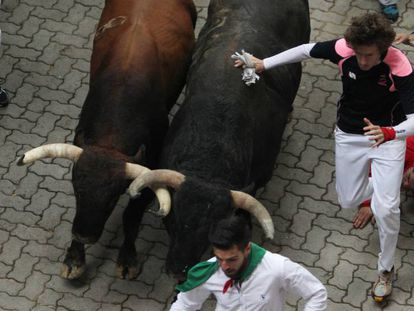 Day 7 of the Running of the Bulls at Pamplona.