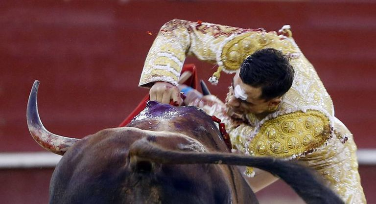 Matador Paco Ureña slaughters a bull in the ring.