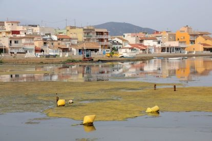 The current state of Los Nietos beach in Mar Menor.