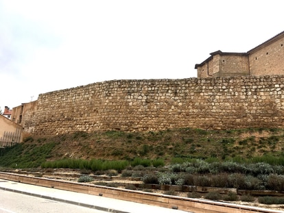 The visible portion of the walls of Almazán (Soria).