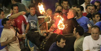 The flaming bull fiesta in Nules, Castellón province.