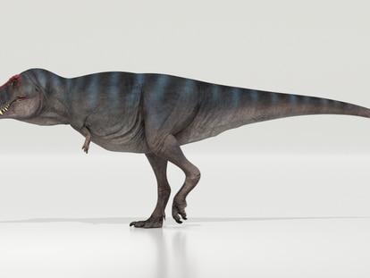 Biomechanical model of the 'Tyrannosaurus rex.'