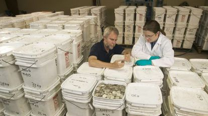 The cofounder of Odyssey Marine Exploration, Greg Stemm (l), examines coins recovered from the Mercedes.