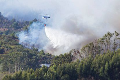 A helicopter drops water onto the forest fire in Guía, Gran Canaria.