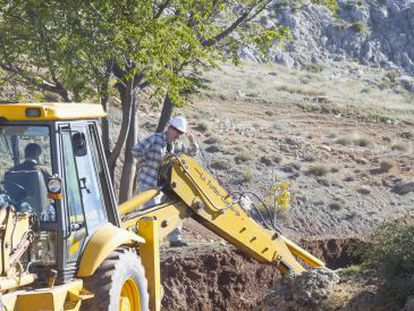 Diggers are back in the area where Federico García Lorca's body is thought to lie.
