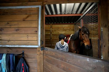 A rider with her horse at a riding stable in A Coruña, in Galicia.