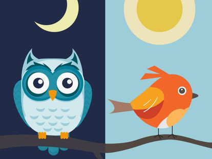 """How being a """"night owl"""" or """"morning lark"""" can affect your life expectancy"""