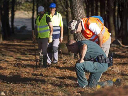 Police and volunteers search for Diana Quer in Galicia last week.