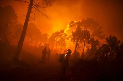 A fireman walks between burned trees in a forest fire in the municipality of Tabuyo del Monte in Spain's Castilla y León region, on August 21, 2012. Around 500 soldiers were sent to the area to fight the fire, which authorities said consumed 80 square kilometers of forest. Climate change is the leading cause: with less rain, the soil is parched. Forest fires have become increasingly more intense and more difficult to put out. Drought and extreme temperatures change the forest mass, making it burn faster.