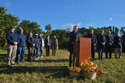 Mauricio Macri at a citrus plantation in Concordia.