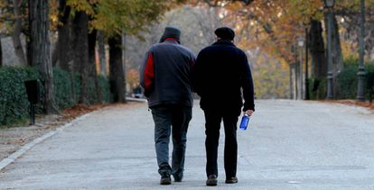 A couple of pensioners in the Retiro Park, Madrid.