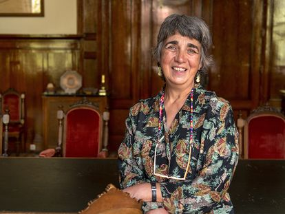 Ana María Alonso Zarza, director of the Geological and Mining Institute of Spain.