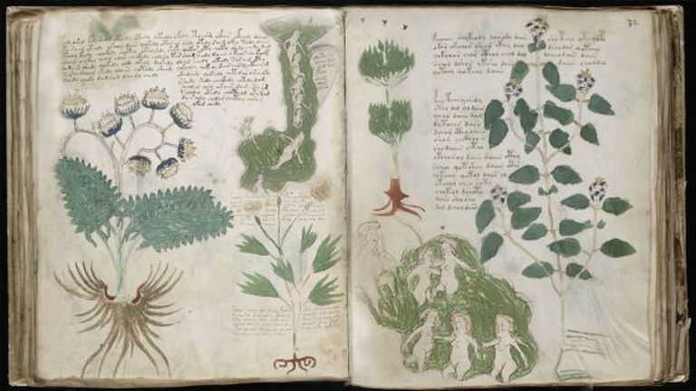 The mysterious 'Voynich Manuscript.'