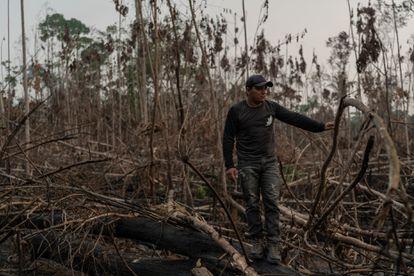 Eric Karipuna, 24, observing the devastation in Karipuna territory in Porto Velho.