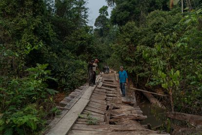 Karipuna people at the bridge they say was deliberately damaged by loggers.