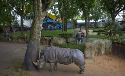 A rhinoceros at the Barcelona zoo.