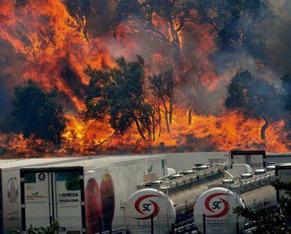 Flames rage near La Jonquera (Girona).