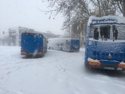 Stranded buses in Madrid