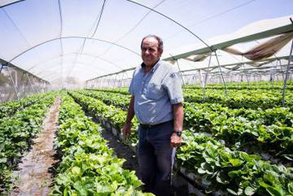 José M. Ortigosa, agricultural businessowner