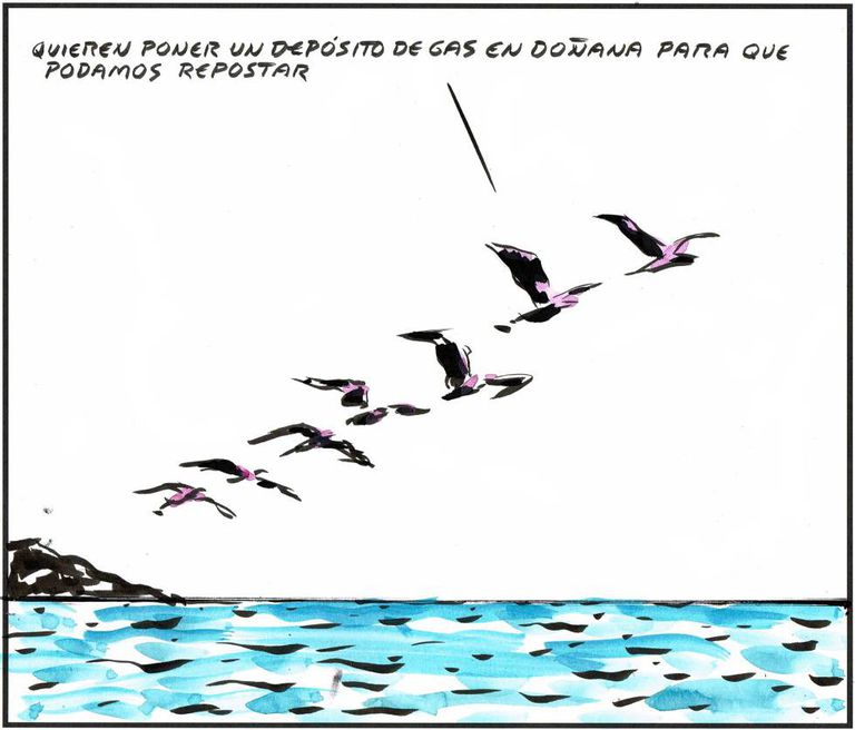- They want to build a gas plant in Doñana so that we can refuel.