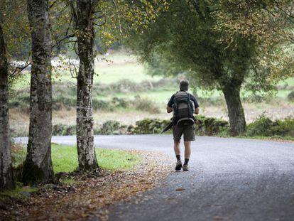 A walker on the Camino de Santiago route between Rente and Brea.