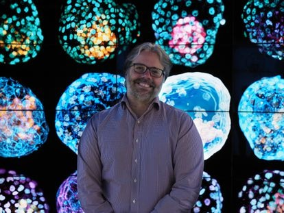 Biochemist José Polo poses with images of his human pseudo-embryos.