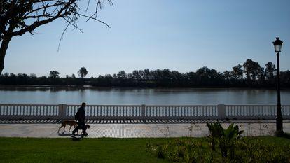 A man walks by the Guadalquivir River in Coria del Río.