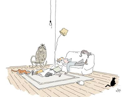 - I wish I were a cat in this household.