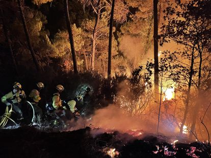 Around 200 firefighters from all over Andalusia are battling a large blaze in Sierra Bermeja, Málaga.