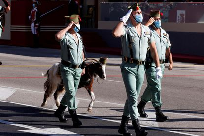 Members of La Legión with a goat, the elite unit's mascot, during the military parade for Spain's National Day.