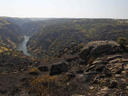 The scorched banks of the Duero, with Portugal on the left and Zamora province on the right.