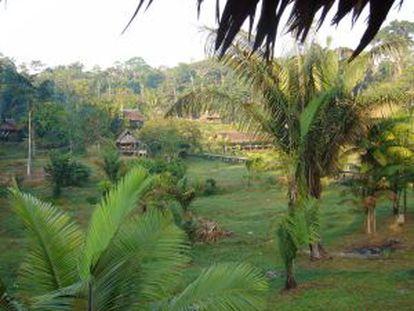 The IDEAA clinic in the Amazon basin.