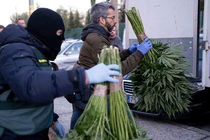 A drug haul in Pinos Puente, Granada.