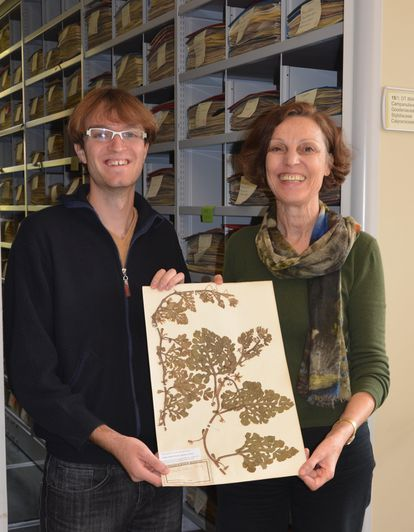 The biologist Guillaume Chomicki and the botanist Susanne Renner holding a preserved watermelon plant at the herbarium of the Munich botanical garden.