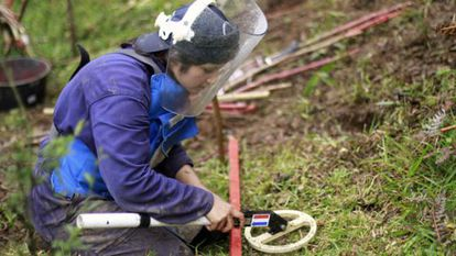 A woman looks for mines with a metal detector.