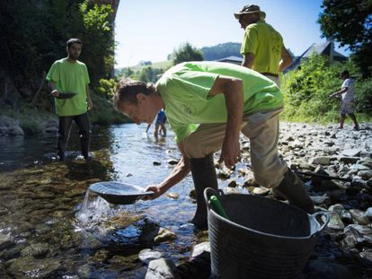 Ismael Sanfiz searches for gold in Navelgas river, in Asturias.