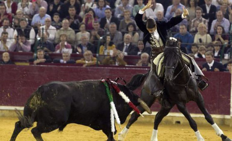 The EU initiative still has many hurdles to clear before it affects bullfighting.