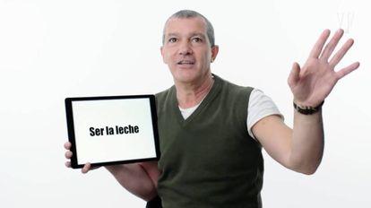 """Antonio Banderas: He's """"the milk."""""""