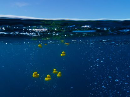 A recreation of the 1992 rubber duck accident on the BBC's 'Blue Planet II' series.