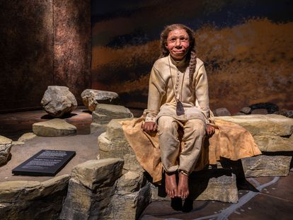 An exhibition on Neanderthals in Moesgaard Museum in Denmark.