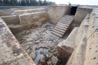 Animals sacrificed in a ritual that took place 2,500 years ago in a building unearthed in Guareña, Badajoz. The staircase makes this Tartessian excavation unique in this part of the world.