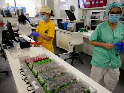 Microbiologists in Madrid's Gregorio Marañón hospital process samples ready for PCR coronavirus testing.
