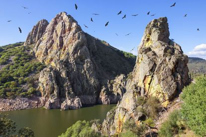 A paradise for birdwatchers, Monfragüe was declared a national park in 1979 after years struggling to ensure that the eucalyptus plantations didn't destroy the brushwood and the indigenous Mediterranean forests. With its rocks and rivers, it is perfect territory for black storks and Golden Eagles.