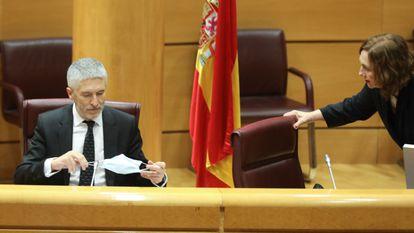 Interior Minister Fernando Grande-Marlaska in the Senate last week.