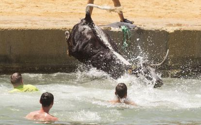 A bull ends up in the sea during local fiestas in Denia.