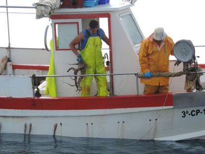 Two fishermen pull an octopus out of the water in Altea Bay.