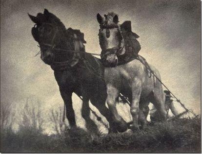 'Blood traction,' by Antoni Campañà, 1933.