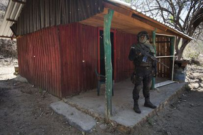 A policeman stands outside a hut that La Tuta used as a hideout.