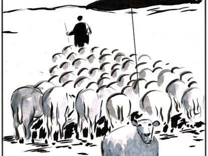 """""""The shepherd has registered us as a sheep association to collect subsidies."""""""