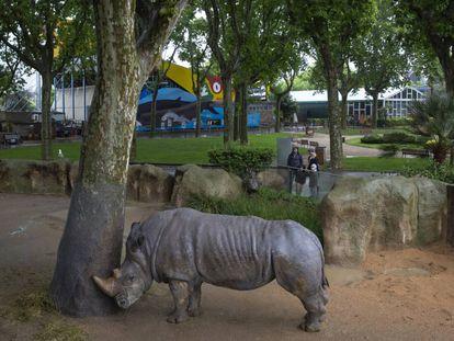 A rhinoceros at the Barcelona zoo.